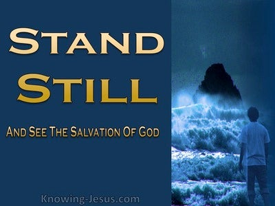 Exodus 14:13 Stand Still And See The Salvation Of God (gold)
